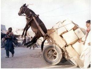 burden too heavy