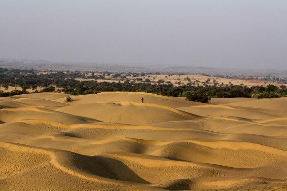 Thar_desert_Rajasthan_India